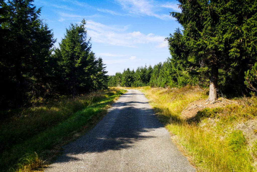 Droga granią Gór Orlickich