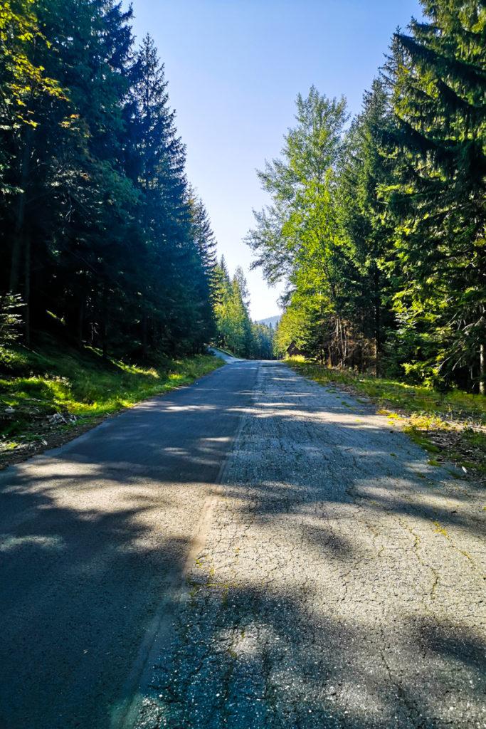 Droga Sudecka łączy się z szosą z Podgórzyna. To tu zaczyna się crème de la crème podjazdu na Przełęcz Karkonoską