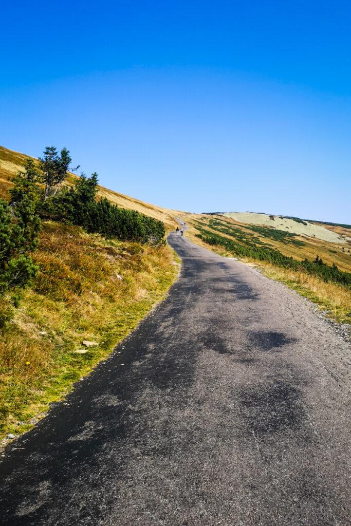 Last meters of a Modre Sedlo uphill