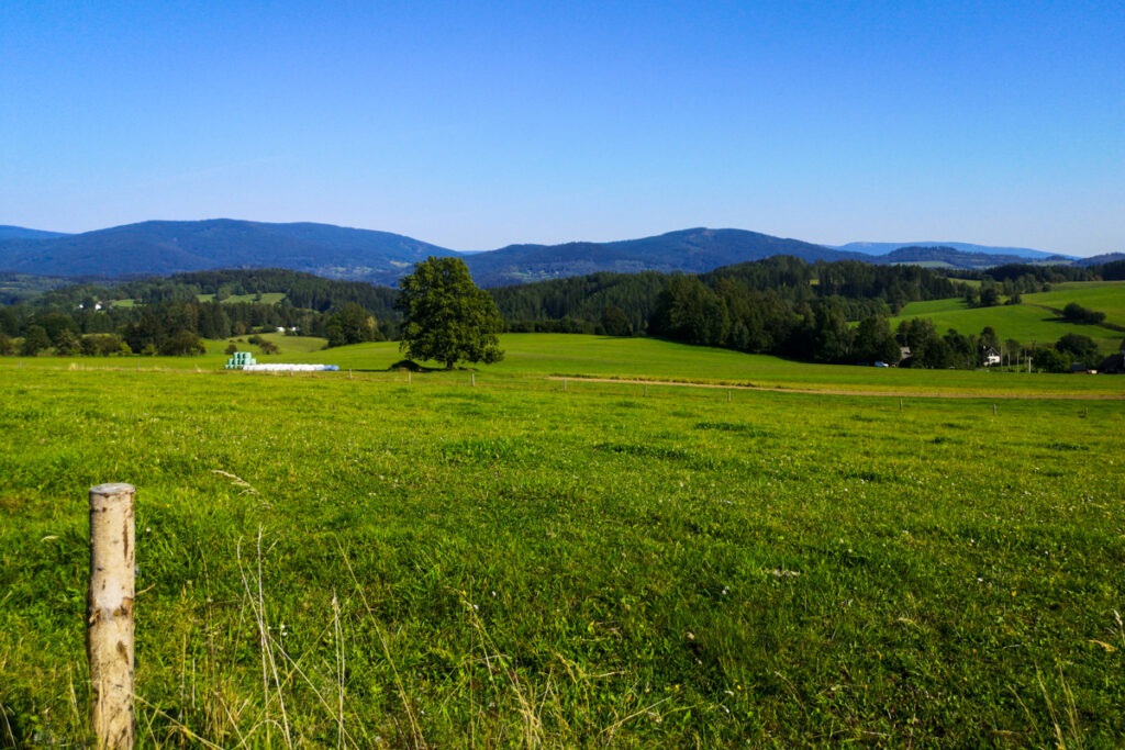 Meadow nearby Stare Mesto